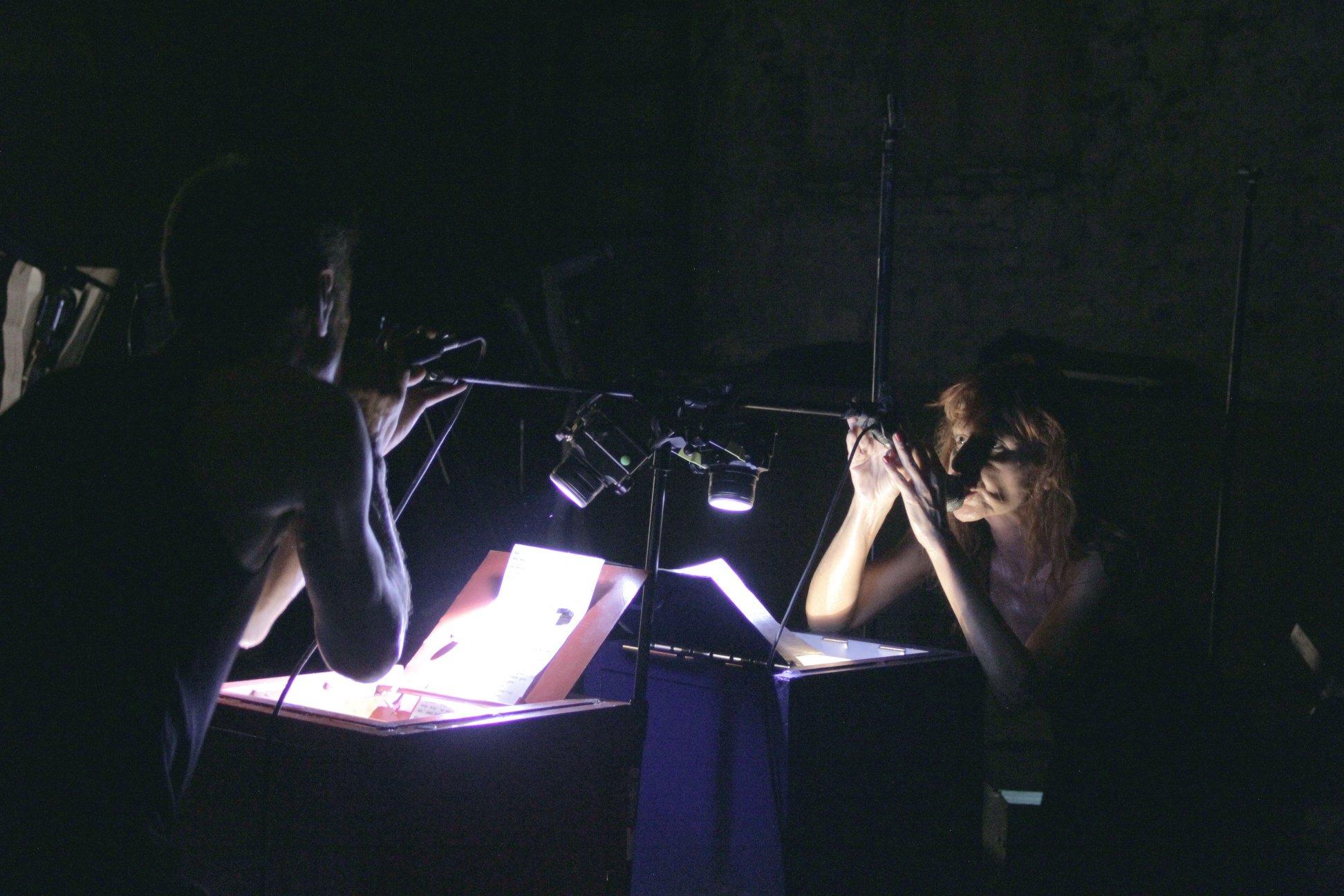 DB Indoš House of Extreme Music Theatre: Hour Spider Rain Tivoli Bewegen - DB Indoš, Tanja Vrvilo